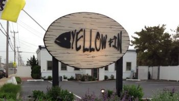 Yellowfin.jpg